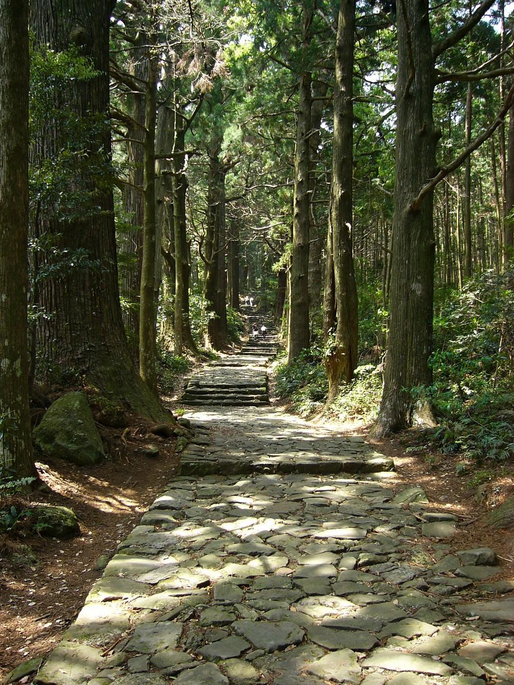 【世界遺産】意外と知らない国内世界遺産「紀伊山地の霊場」に関するまとめ